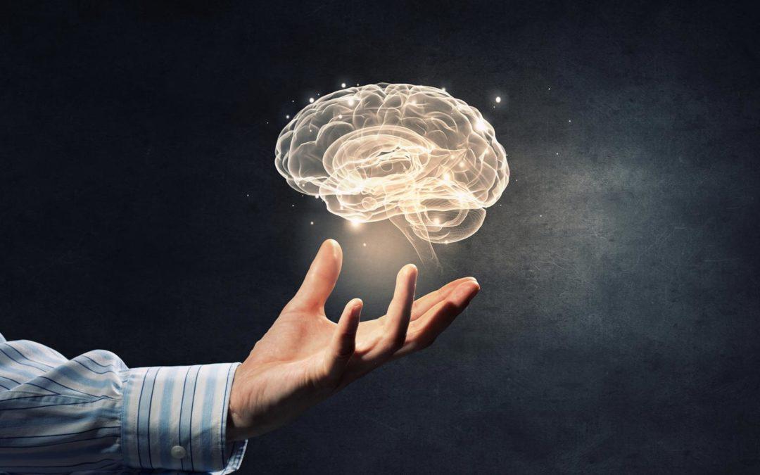 ¿La gestión del conocimiento ha existido siempre?